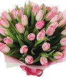 35 нежно розовых тюльпанов